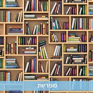בניית ספריה